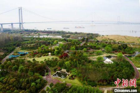 航拍长江泰州段。高港区供图